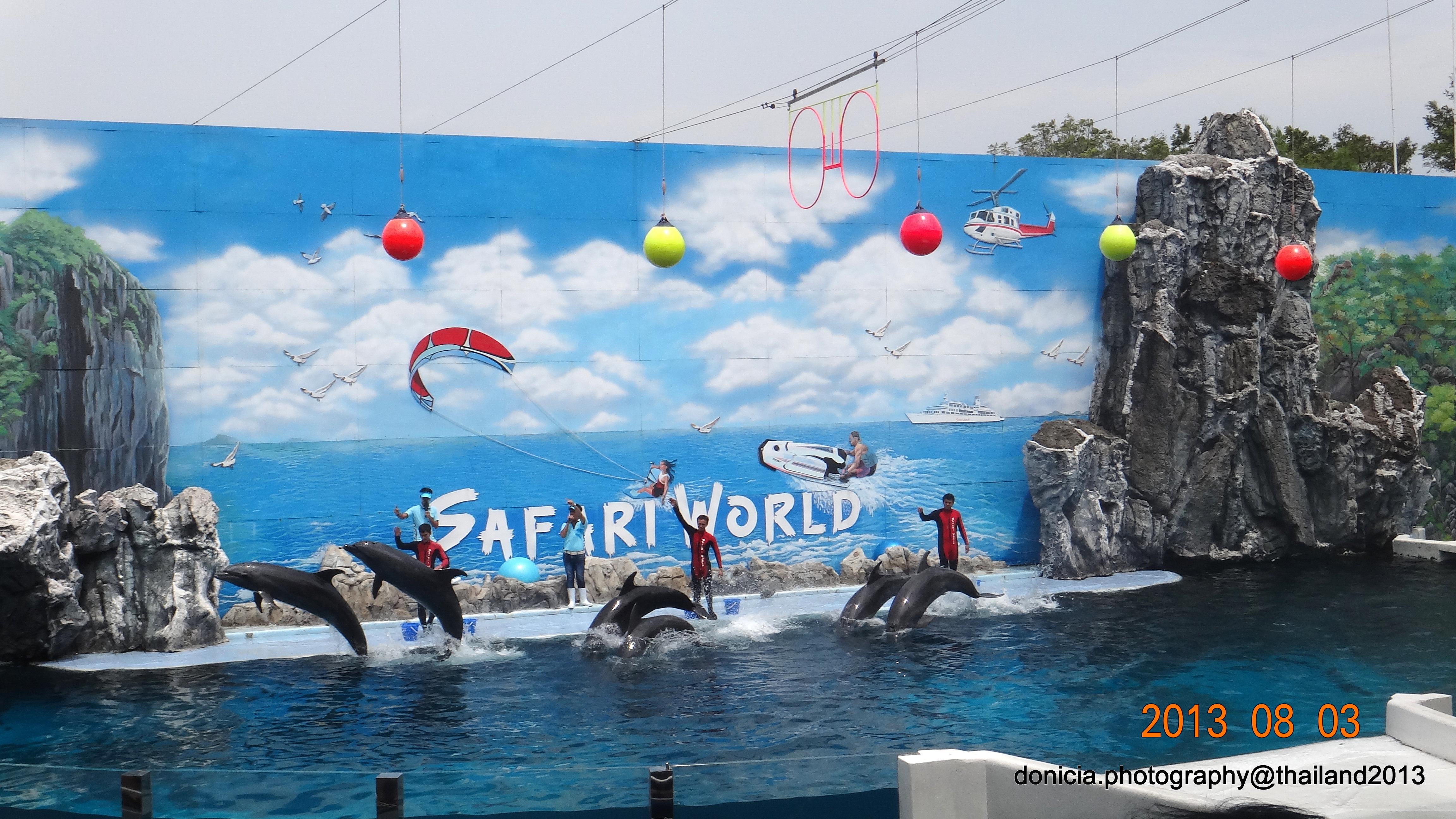 Safari World  。 ‿ 。 Donicias World